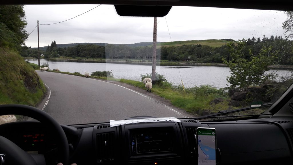 Mit Camper durch Großbritannien - Ein Singe Line Track auf der Isle of Mull