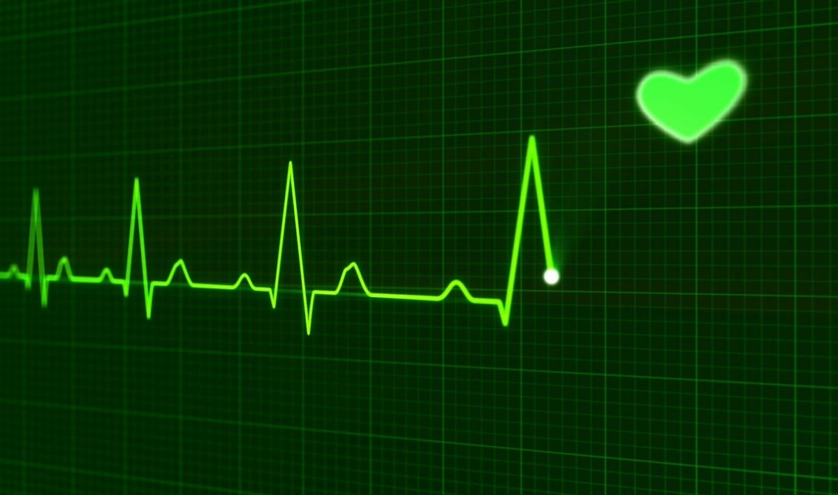 krankenversicherung familie weltreise - Titelbild - heartbeat pulse